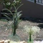 finca-aguasanta