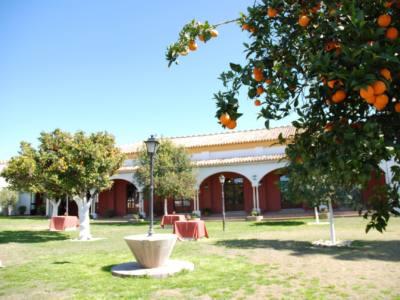 Hacienda-Mejina